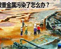 重金属污染的地区选用哪种净水器好?